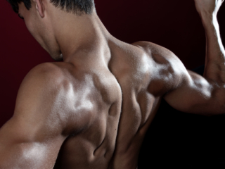 Muscular back of male fitness model in gym